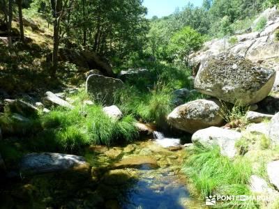 Pinares Navaluenga; puente 12 octubre;actividades de senderismo;grupos de trekking;escalada